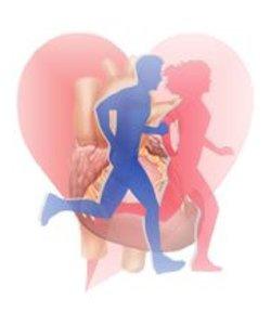 actividad-fisica-cardiovascular.jpg