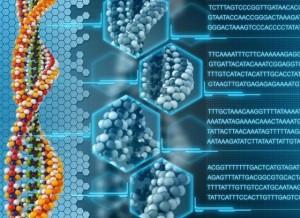 ADN como disco duro